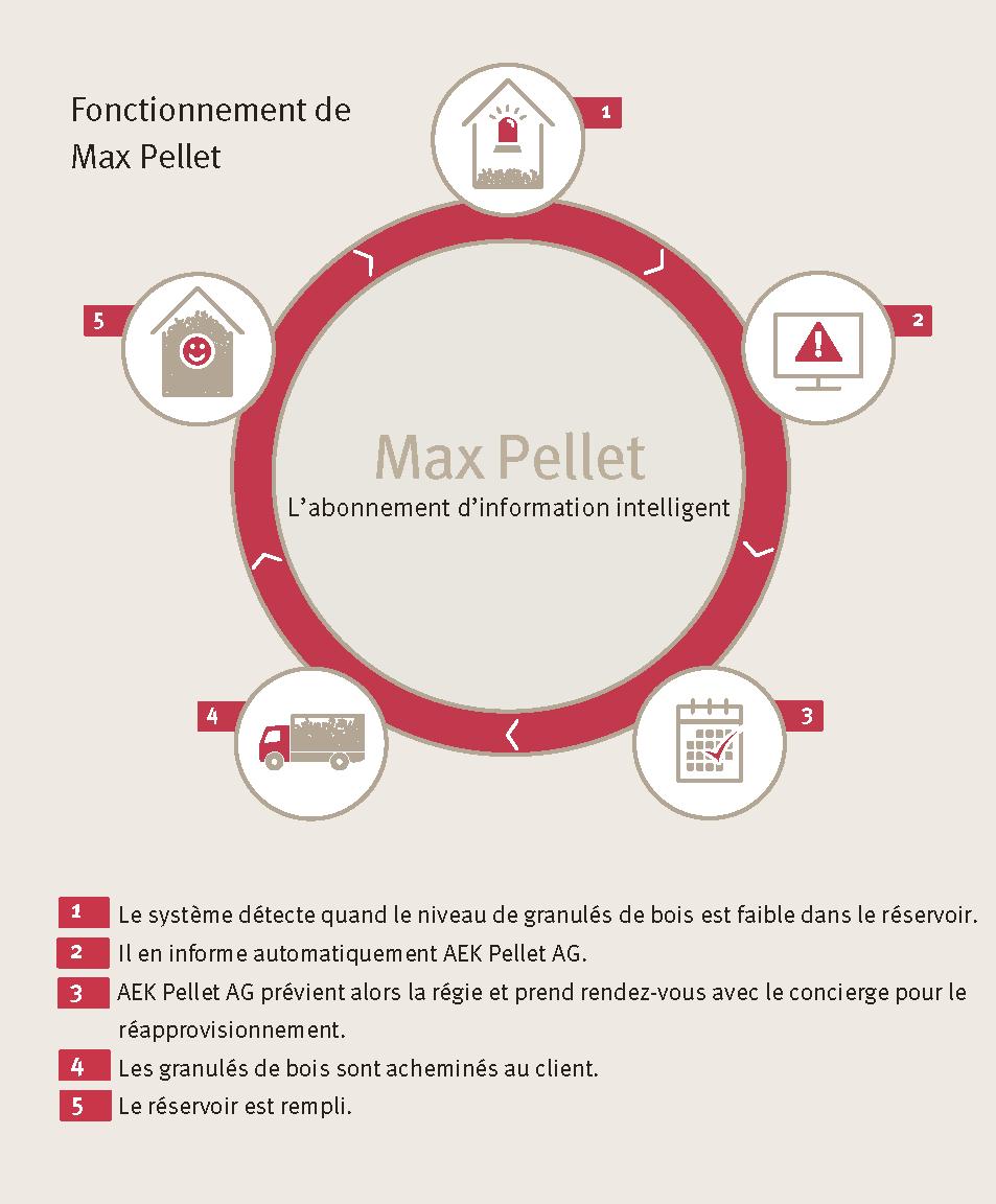 Grafik_MaxPellets_PP - Kopie.png